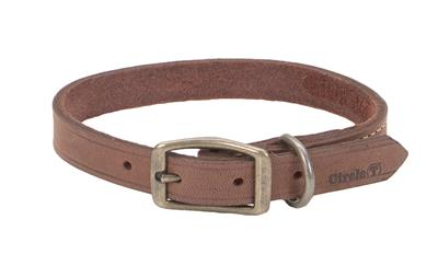 Circle T® Rustic Leather Town Dog Collar