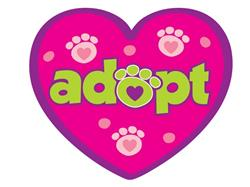 """Adopt - 3"""" Sticker"""