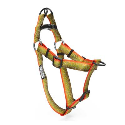 BrookTrout Dog Collars, Leads, & Harnesses by Wolfgang