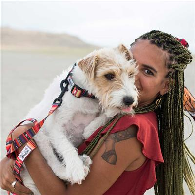 Antigua Dog Collars, Leads, & Harnesses by Wolfgang