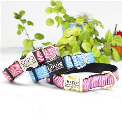Colorful Herringbone Ribbon Dog Collar w/ Black Webbing