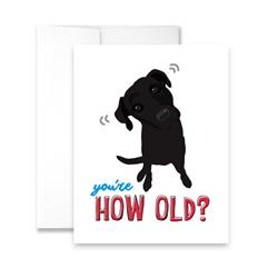 You're How Old? (blank) Greeting Card - Pack of 6 cards