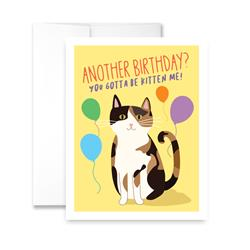 Another Birthday? You Gotta Be Kitten Me! (blank) Greeting Card - Pack of 6 cards