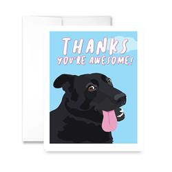 Thanks You're Awesome (blank) Greeting Card - Pack of 6 cards