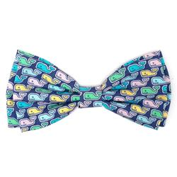 Multi Whales Bow Tie