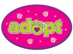Adopt - Oval Magnet