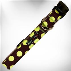 Green Polka Dot on Brown Dog Collars and Leads
