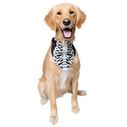 Glow-in-the-Dark Skeleton Bandana