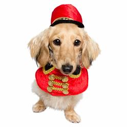 Holiday Nutcracker Soldier Dog Costume