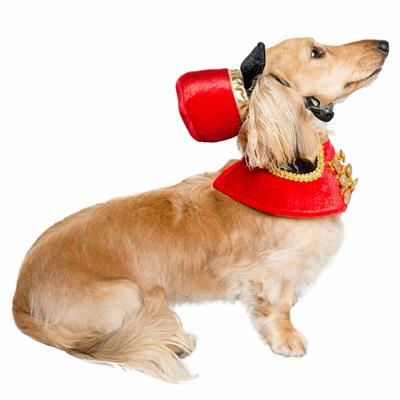 Holiday Nutcracker Soldier Dog Costume