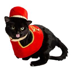 Holiday Nutcracker Soldier Cat Costume