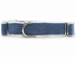 Blue Jean Baby Medium Width Martingale Dog Collar