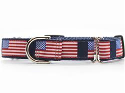 Stars n Stripes Medium Width Martingale Dog Collar
