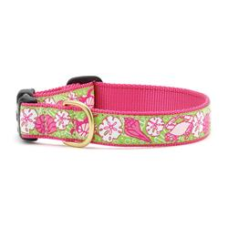 Sealife Dog Collection on Pink Webbing