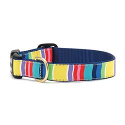 Colorful Stripe Dog Collection on Navy Webbing