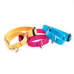 Nylon Martingale Loop Dog Collars (No Buckle)