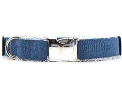 Blue Jean Baby Dog Collar with Silver Metal Buckles