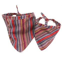 Viva Serape Beach Blanket Dog Bandana