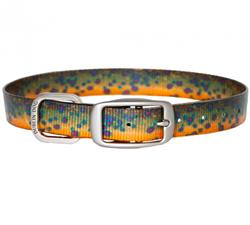KOA Brook Trout Pet Collar