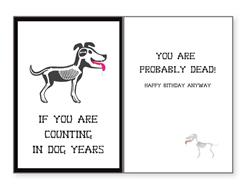 Birthday - In Dog Years... (6 pack)