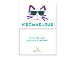 Cat Birthday –Meowvelous(6 pack)