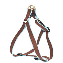 Brown and Aqua - Green Market Collection Harnesses