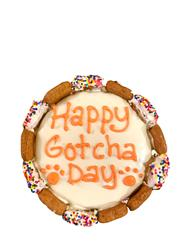 Happy Gotcha Day Cake - Case of 6