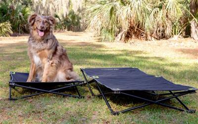 Hyper Pet™ TRAVEL COLLECTION MD/LG Home and Away Elevated Pet Bed (ALSO AVAILABLE IN SMALL)