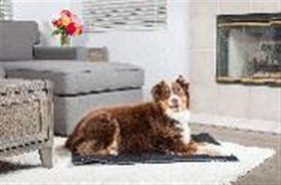 Hyper Pet™ TRAVEL COLLECTION SMALL Home and Away Travel/Roll Bed (available in 3 sizes)