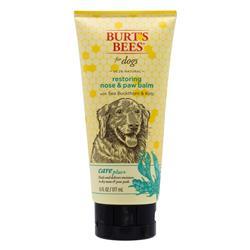 Burt's Bees Care Plus+ Sea Buckthorn Kelp Restoring Nose & Paw Lotion