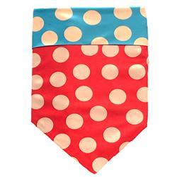 Small Protective Bandana - Tan/Red/Turquoise