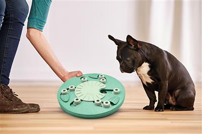 Nina Ottosson Dog Worker Toy - Green Composite