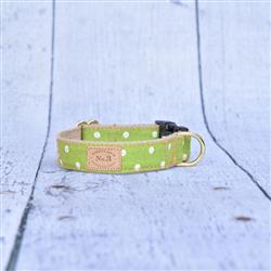 Lime Polka Dot Collars, Leads, and Harnesses