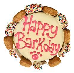DISPLAY CAKE: Happy Barkday Cake with Gourmutt Bones Pink