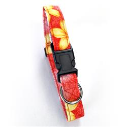 Key West Red Beach Dog Collars and Leashes