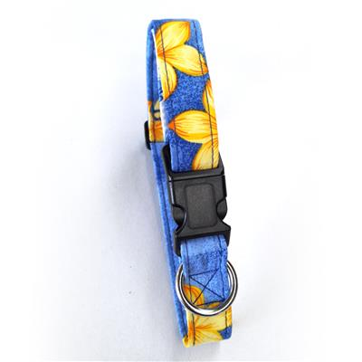 Key West Blue Beach Dog Collars and Leashes