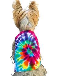 Bright Spiral tie dye tank