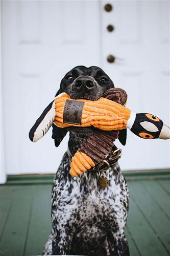 Tall Tails Pheasant With Squeaker, 16""