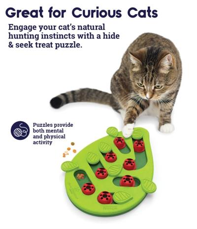 Buggin Out Puzzle & Play Cat Toy by PetStages & Nina Ottosson