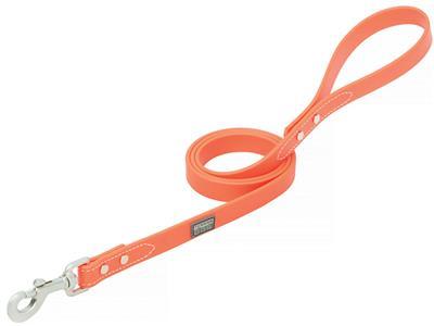 Brahma Webb® Dog Collar or Leash - Blaze Orange