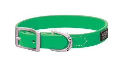Brahma Webb® Dog Collar or Leash - Lime Green