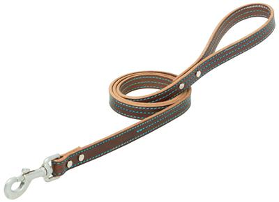 Brown Leather Dog Collar/Leash with Hurricane Blue Stitching