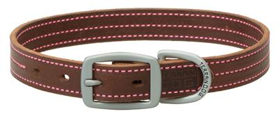 Brown Leather Dog Collar/Leash with Pink Stitching