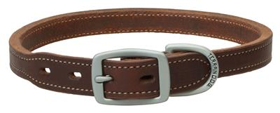 Oiled Harness Leather Hybrid Dog Collar/Leash