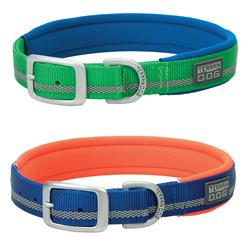 Contrasting Neoprene Lined Dog Collar