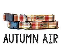 Autumn Air – Organic Cotton Collars & Leashes