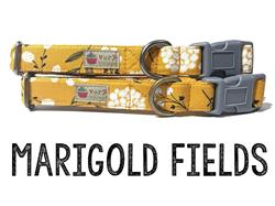 Marigold Fields – Organic Cotton Collars & Leashes