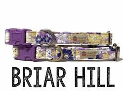 Briar Hill – Organic Cotton Collars & Leashes
