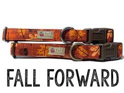 Fall Forward – Organic Cotton Collars & Leashes