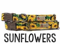 Sunflowers – Organic Cotton Collars & Leashes